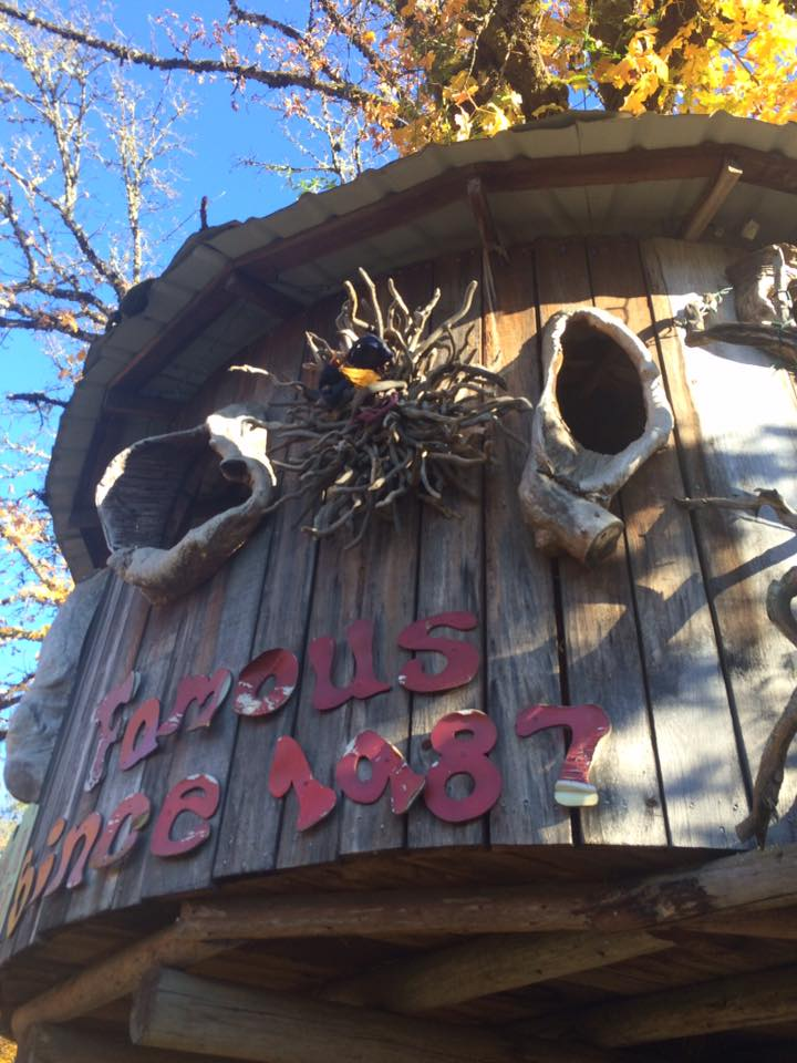 Famous treehouse